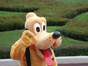 disneyland goofy