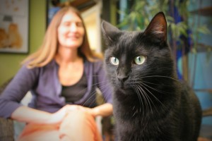 Sindi and black cat at the San Diego Humane Society in their cat adoption gallery room.