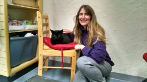 Here is one of my new black cat friends, Ace. I met him in Sedona, Arizona at Sedona Pet Supply. Love him!